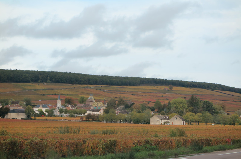 Ansicht Aloxe-Corton