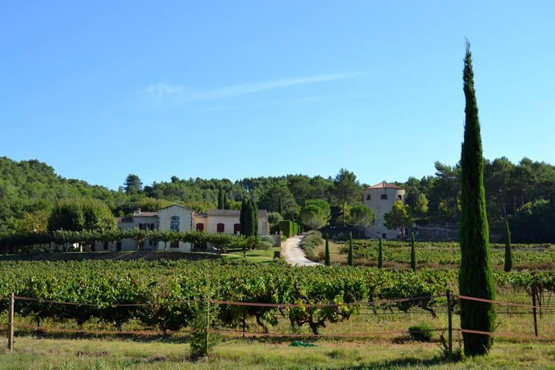 Weingut Domaine Tour Campanets